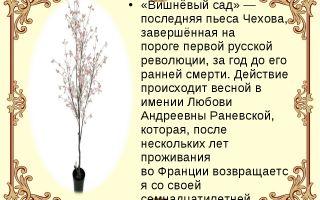 """Краткий пересказ пьесы """"вишневый сад"""" чехова по действиям (краткое содержание)"""