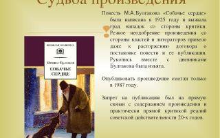 """Краткое содержание повести """"собачье сердце"""" по главам: краткий пересказ"""