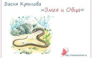 """Мораль басни """"змея и овца"""" крылова (анализ, суть, смысл)"""