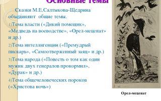 Жанровое своеобразие сказок салтыкова-щедрина: особенности жанра