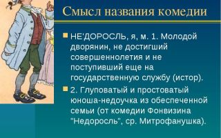 """Смысл названия комедии """"недоросль"""" фонвизина"""