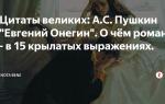 """Цитаты из романа """"евгений онегин"""" пушкина: крылатые выражения, знаменитые фразы, афоризмы"""