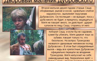 "Митя в романе ""дубровский"": образ, характеристика, описание"