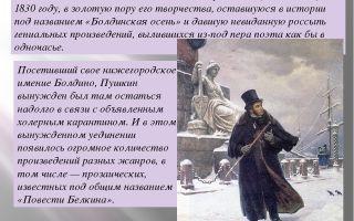 "Владимир в повести ""метель"" пушкина: образ, характеристика, описание"