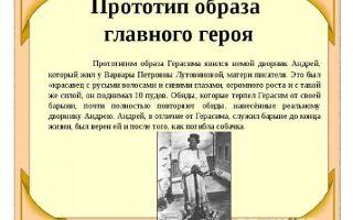 """Прототипы героев рассказа """"муму"""": интересные факты о происхождении персонажей"""