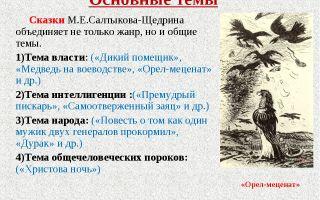"""Анализ сказки """"либерал"""" салтыкова-щедрина: идея, тема, суть и смысл"""