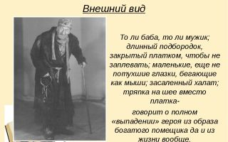 """Образ плюшкина в поэме """"мертвые души"""": описание внешности и характера в цитатах"""