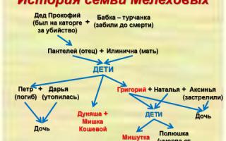 """Семья мелеховых в романе """"тихий дон"""": характеристика, описание членов семьи"""