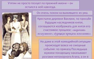 """Князь утятин в поэме """"кому на руси жить хорошо"""": образ, характеристика, описание"""