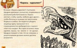 """Анализ сказки """"карась-идеалист"""" салтыкова-щедрина: тема, идея, смысл, главная мысль, мораль, вывод"""