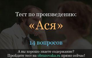 """Тест по повести """"ася"""" тургенева: вопросы и ответы по тексту произведения"""