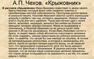 """Николай иванович в рассказе """"крыжовник"""" чехова: образ, характеристика"""