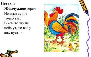 """Мораль басни """"петух и жемчужное зерно"""" крылова (анализ, суть, смысл)"""