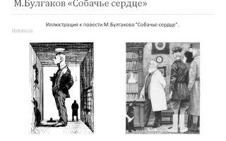 """Иллюстрации к повести """"собачье сердце"""" булгакова: кадры из фильма 1988 года"""