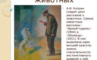 """История создания рассказа """"белый пудель"""" куприна"""