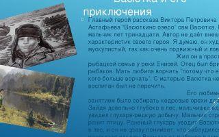 "Васютка в рассказе ""васюткино озеро"": образ, характеристика, описание характера и внешности"