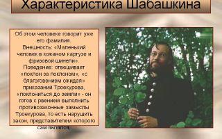 """Заседатель шабашкин в романе """"дубровский"""" пушкина: описание в цитатах"""