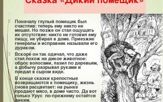 """Анализ сказки """"дикий помещик""""  салтыкова-щедрина: идея, тема, суть, смысл, главная мысль"""