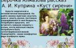 """Вера алмазова в рассказе """"куст сирени"""" куприна: образ и характеристика"""