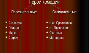 """Положительные и отрицательные герои комедии """"недоросль"""": описание персонажей (таблица)"""