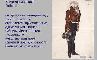 """Характеристика гибнера в комедии """"ревизор"""" гоголя: уездный лекарь христиан иванович гибнер"""