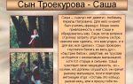 """Саша троекуров в романе """"дубровский"""": образ, характеристика, описание"""