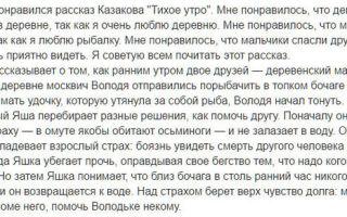 """Краткое содержание рассказа """"тихое утро"""" юрия казакова: краткий пересказ сюжета, рассказ в сокращении"""