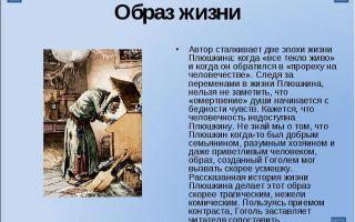 """Крестьяне плюшкина в поэме """"мертвые души"""": описание жизни крестьян и отношения плюшкина к ним"""